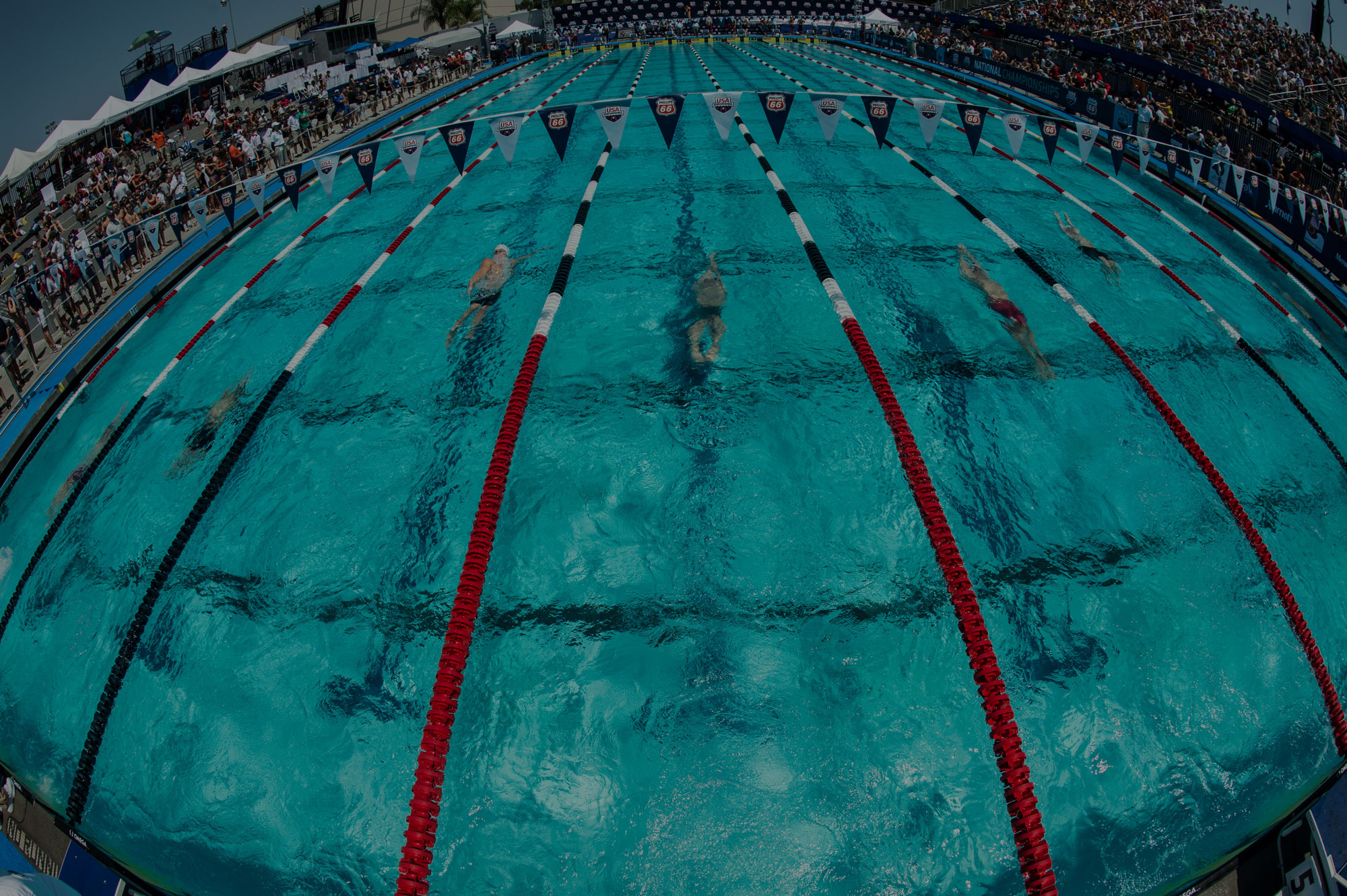 Competitor Swim ® | Leader in the Production of Racing Lanes
